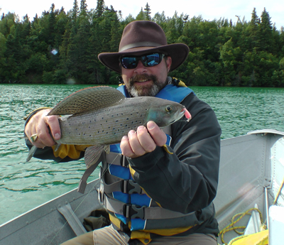 Grayling caught in the Narrows